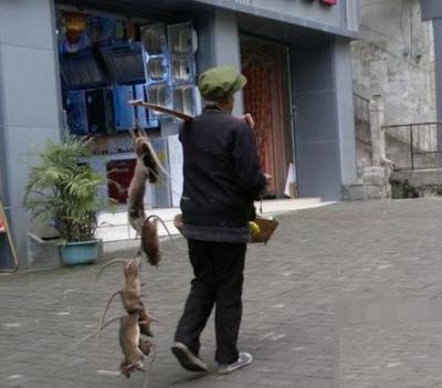 penjual racun tikus yang unik