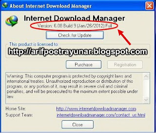 Download IDM 6.08 Build 9 Beta Portable Full Version