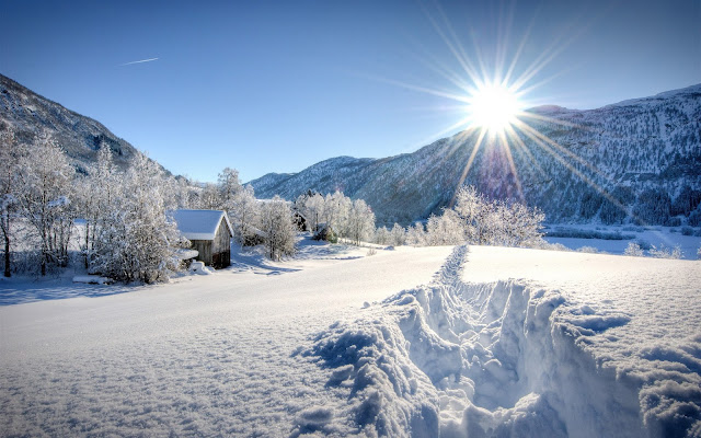 Snow HD Wallpapers