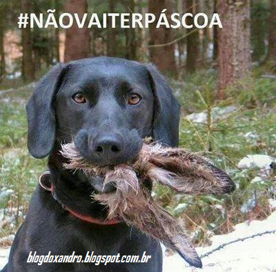 pascoanao.png (400×395)