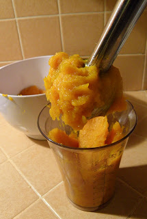 Pureeing Pumpkin with Immersion Blender