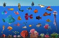 Meer-Filz-Welten