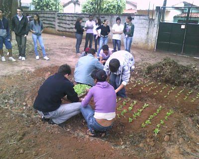 Educação ambiental é preservação do meio ambiente