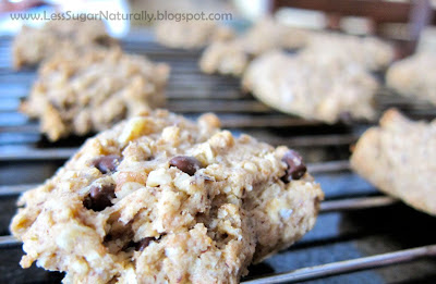 low sugar chocolate chip stevia cookies