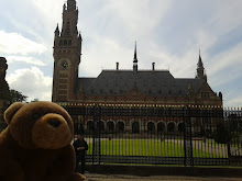 Teddy Bear in Hague