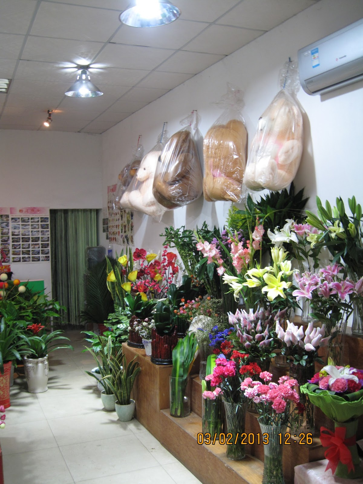 China non stop flower shops flowers and plants business in china bouquets and plants display for special occasions izmirmasajfo