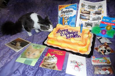 Anakin's First Birthday Cake & Presents