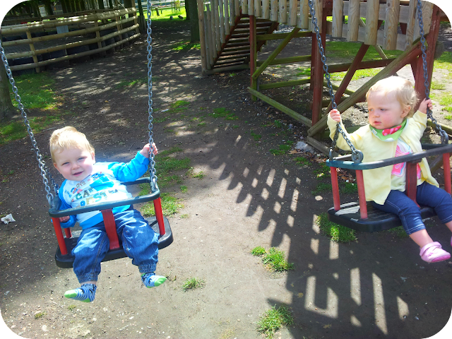 babies on swings, wingham wildlife park, blonde boy and girl