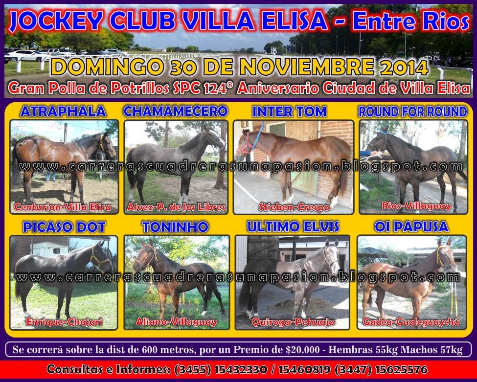 VILLA ELISA - POTRILLOS - 30.11.2014