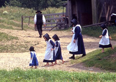 a study of the amish life In the past most families farmed, but now many amish earn their living from  various types of amish-owned establishments—small shops, businesses,  carpentry,.