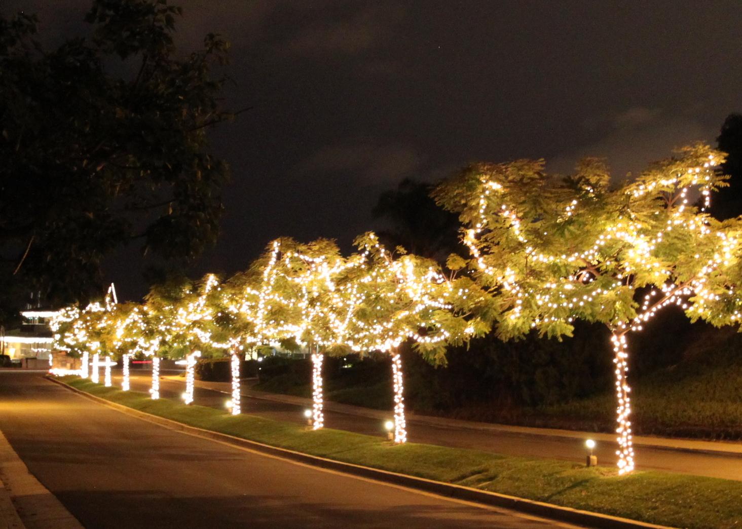 christmas lights mid century modern style
