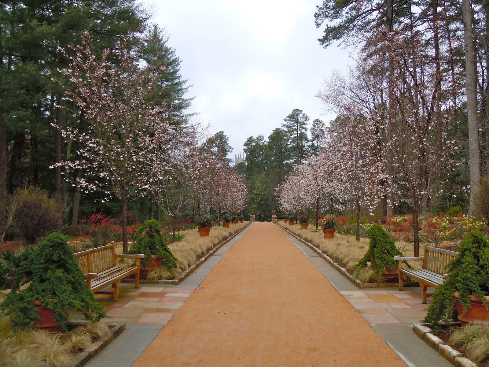 The Happy Nomads : Sarah P. Duke Gardens- Part 1