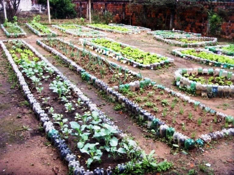 horta e jardim juntos:Meio Ambiente Técnico: Como Fazer uma Horta
