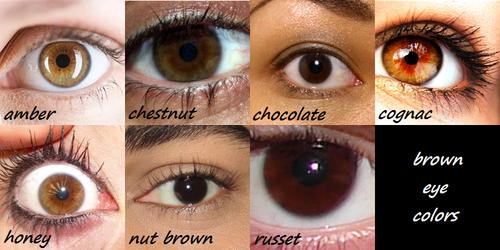 Brown eyes tumblr