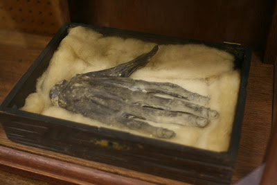 hand of glory at Whitby Museum