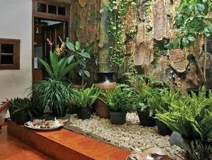 dekorasi taman dan kolam hias bandung: jasa tukang taman