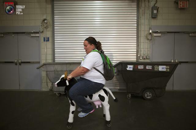 Женщина седлает корову на колёсах на выставке-ярмарке игрушек Toy Fair 2013. (Andrew Kelly/REUTERS)