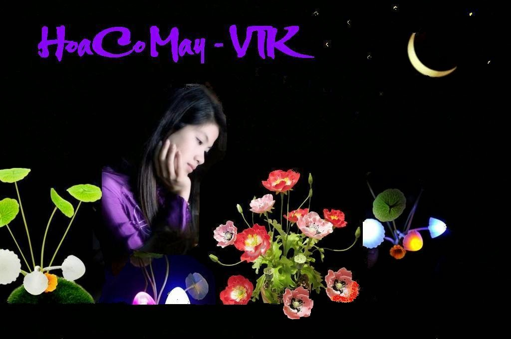 Hoa Cỏ May - VTK