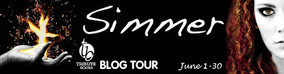 Simmer: Midnight Fire Series, Book Two Blog Tour
