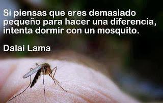 frases de Dalái Lama