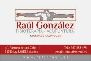 www.fisioraul.es