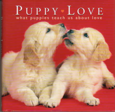 what is puppy love
