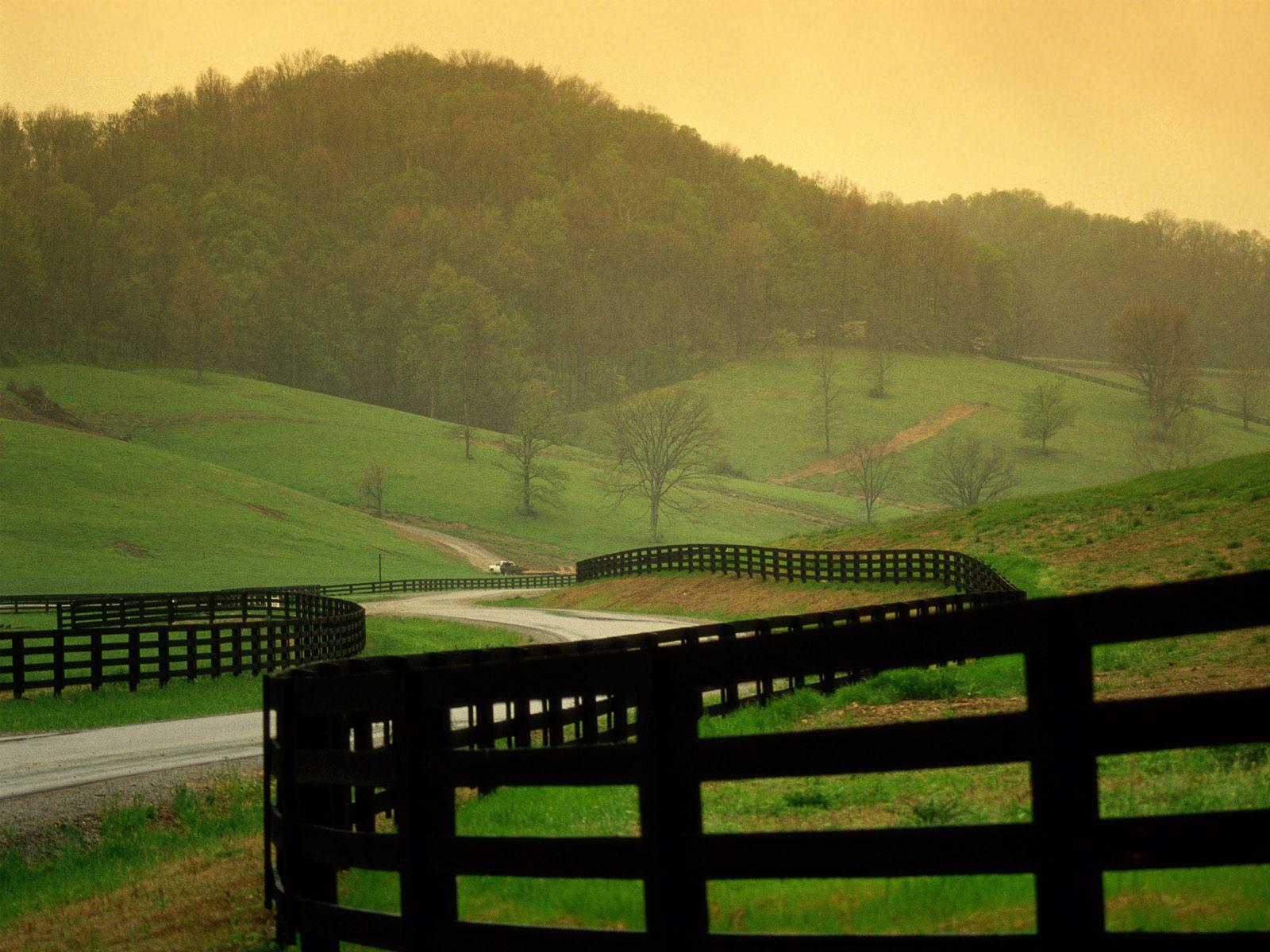 urban living vs rural living essays