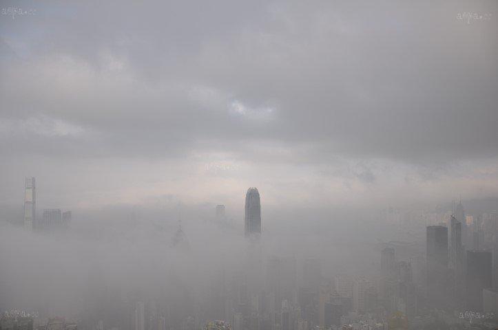 平流霧下的維港門廊