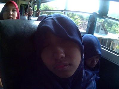 Anis tidur