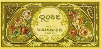 Rose Vaissier n° 788