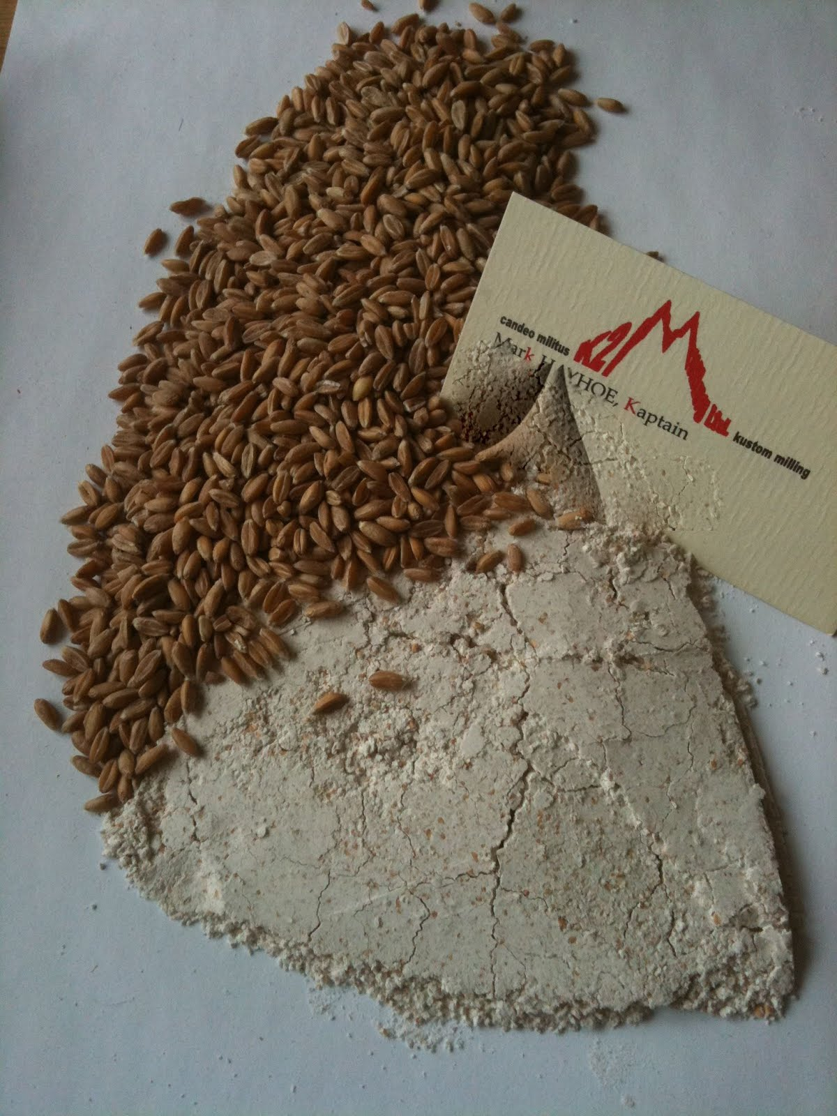 SPARROW Spelt flour. Milled from organik winter spelt grown under 20 km from mill.