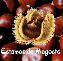 MAGOSTOS 2015