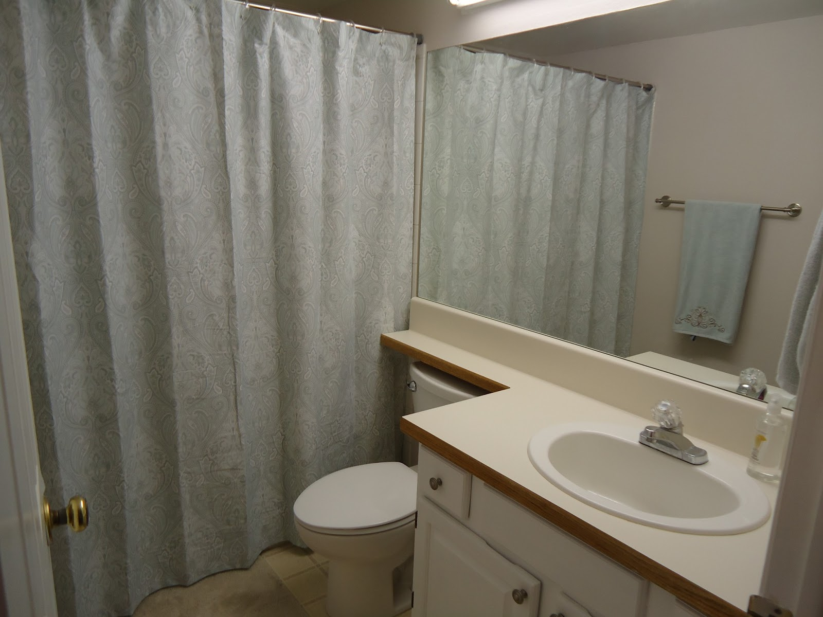 Cobblestones ivy bathroom rehab where things are now for Bathroom rehab