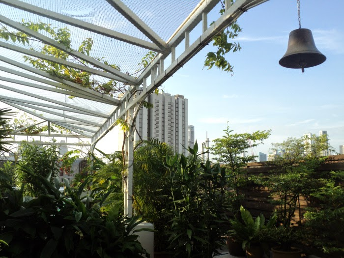 Loo with a View: from the roof garden at Hangout Hostel, Mt Emily, Spingapore - photo by Katie @ Second-Hand Hedgehog travel blog