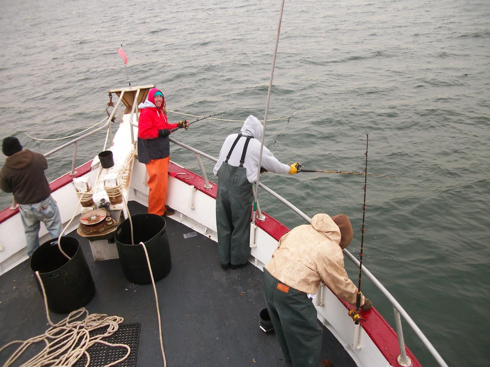 fishpoint рыбалка