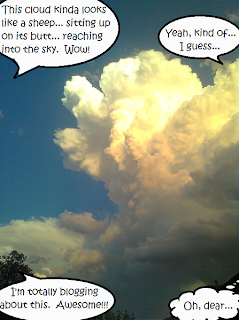 "Speech bubbles surrounding a cloud: ""This cloud kinda looks like a sheep... sitting up on its butt... reaching into the sky.  Wow!"" ""Yeah, kind of... I guess..."" ""I'm totally blogging about this.  Awesome!!!"" Thought bubble: ""Oh, dear..."""