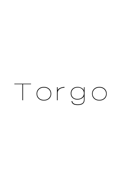 TORGO - EXCLUSIVE INTERVIEW