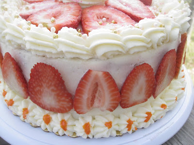 Easy Sponge Cake Recipe Vanilla