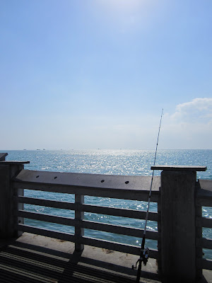 another view off the key biscayne fishing pier