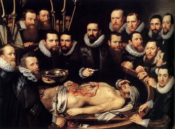 Bienvenido a AnatomiaHumana.info
