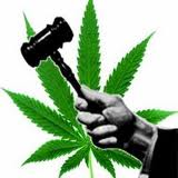 "NJ ""Weedman"" found not guilty in jury nullification victory Jury+nullification+weed+%282%29"