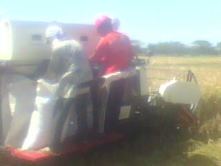 mesin panen padi