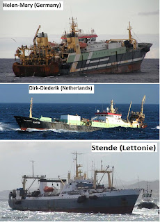 La plus grande pêche en ligne
