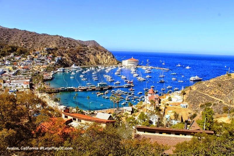 Santa Catalina Island Avalon, California