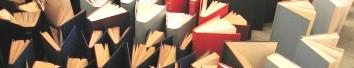 Publicación más reciente de los portales a los que MontiRed sirve de soporte bibliográfico