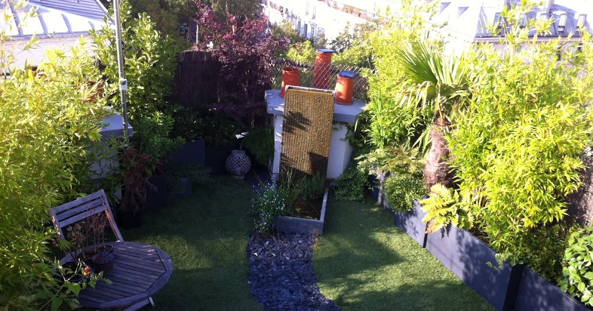 Un jardin sur le toit juillet 2012 les plantes s 39 intallent doucement - Petit jardin tijuana paris ...