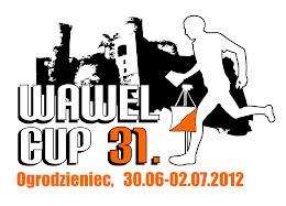 Wawel Cup 2012