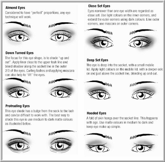 Eye Shadow For Beginners Guide Blonde In Kuwait