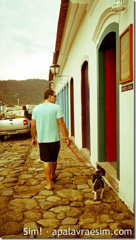 como escolher hotel com cachorro hotel pet friendly dicas viagem com cachorro viagem pet friendly