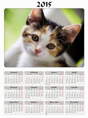 calendario 2015 gatto